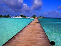 maldivi008
